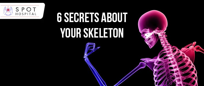 6 Secrets about your skeleton