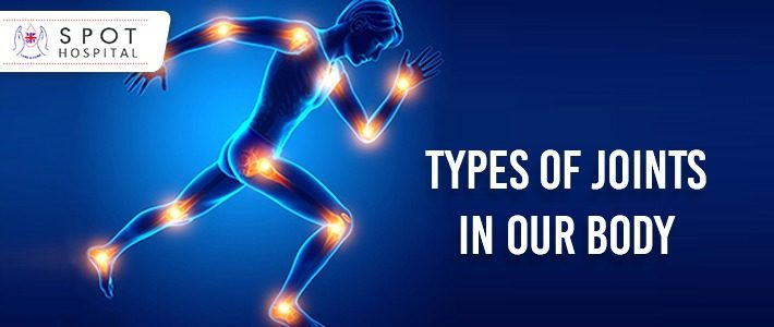 Types of joints in our body